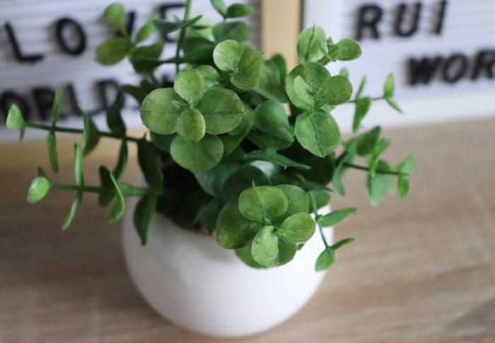 仕事や家事に追われていると生きた植物を管理して育てるのは、難しいのです。【フェイクグリーン】